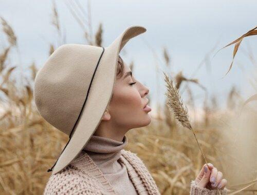Quelle marque pull laine ?